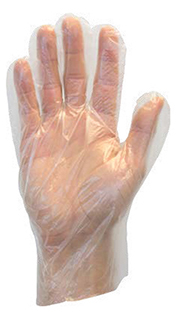 Safety Zone Food Service Gloves